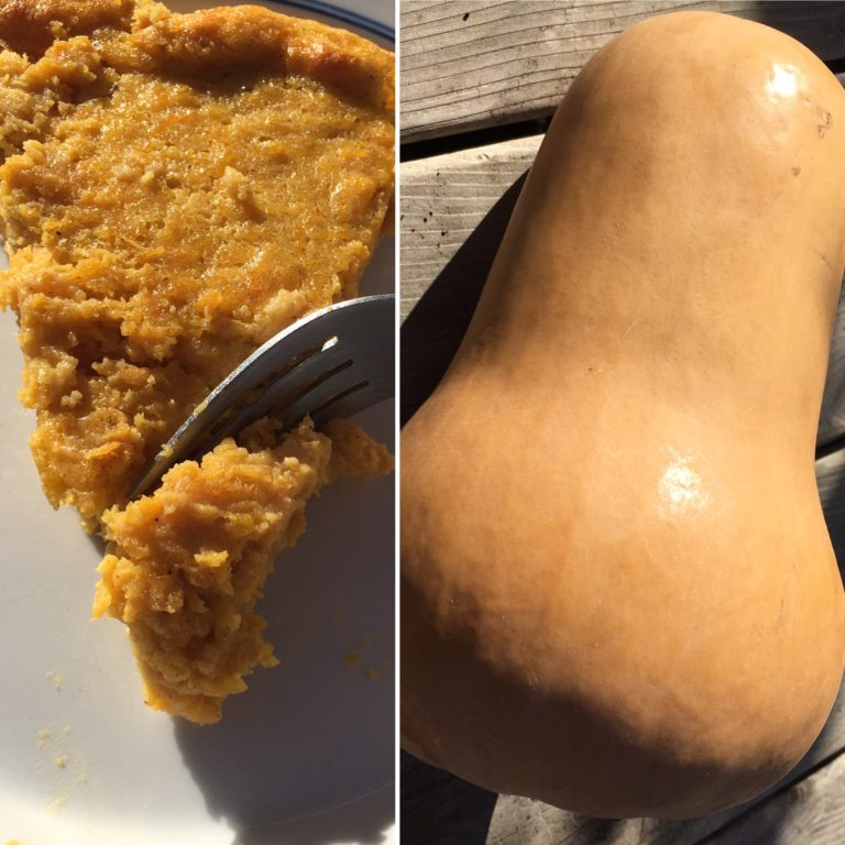 Recipes maggies butternut paleo puddin pie high falls food co op our produce manager maggie loves to experiment with the organic vegetables she brings home from the co op for this recipe she set out to create a forumfinder Gallery