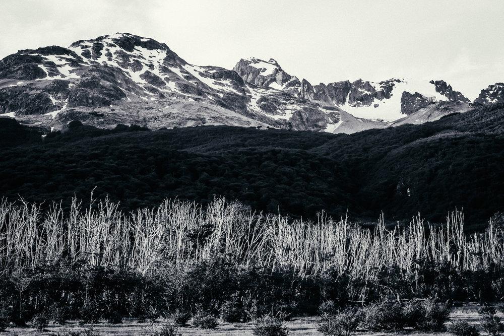 CBS_Patagonia_deBontin-725.jpg