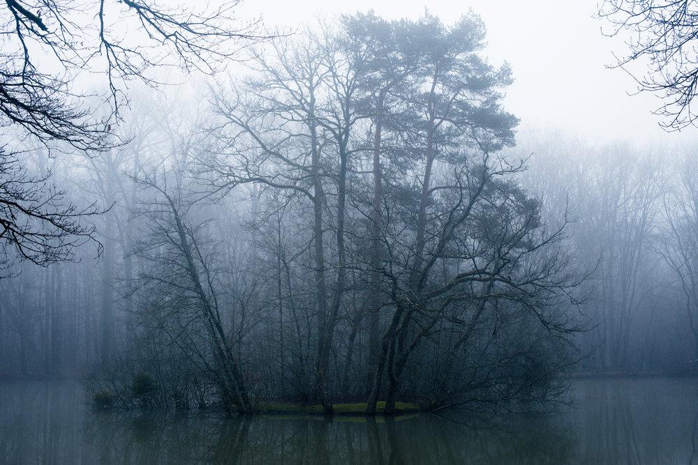 Bontin_Fog_0215-37.jpg