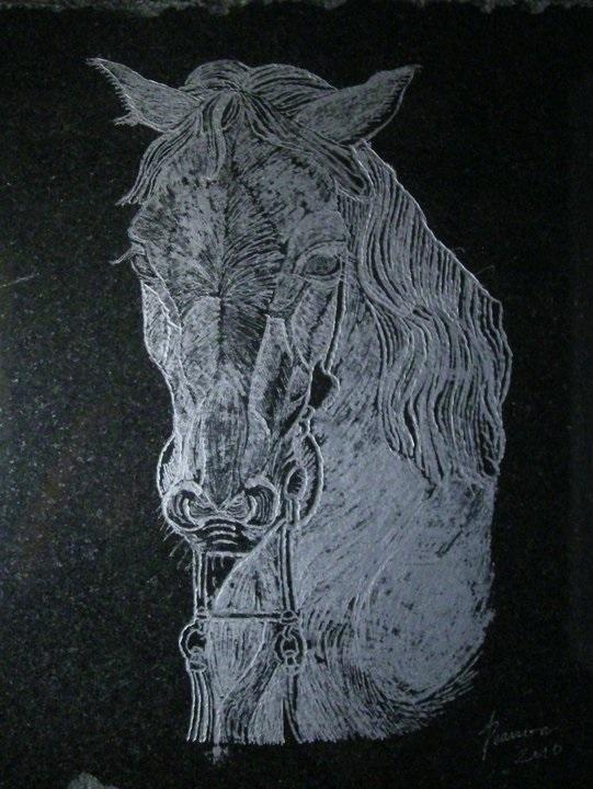 Horse_Etching_2010.jpg