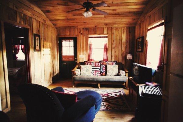 Dark Cabin Living Rm 2.jpg