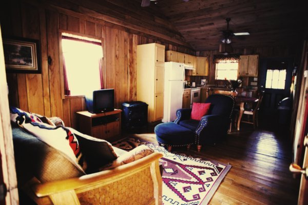 Dark Cabin Living Rm.jpg