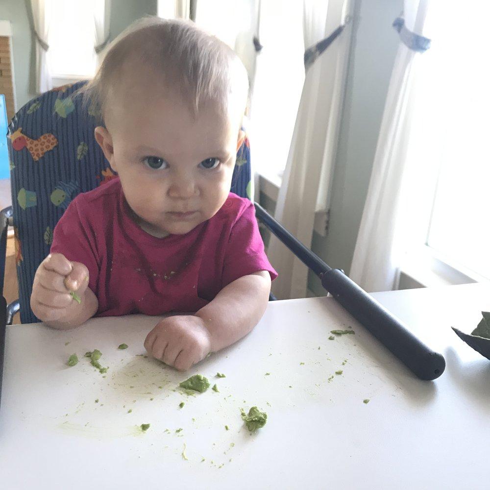 First avocado.