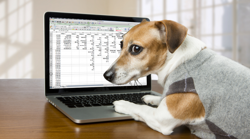 spreadsheet_dog.png