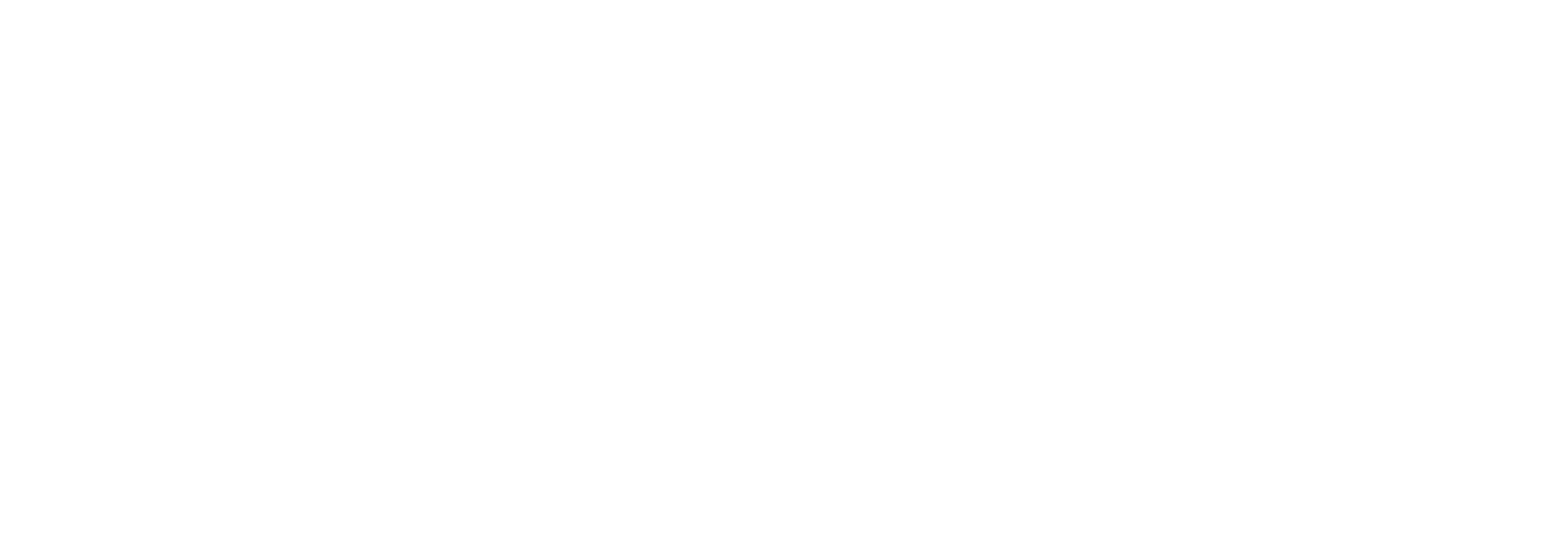 The Body Mechanic