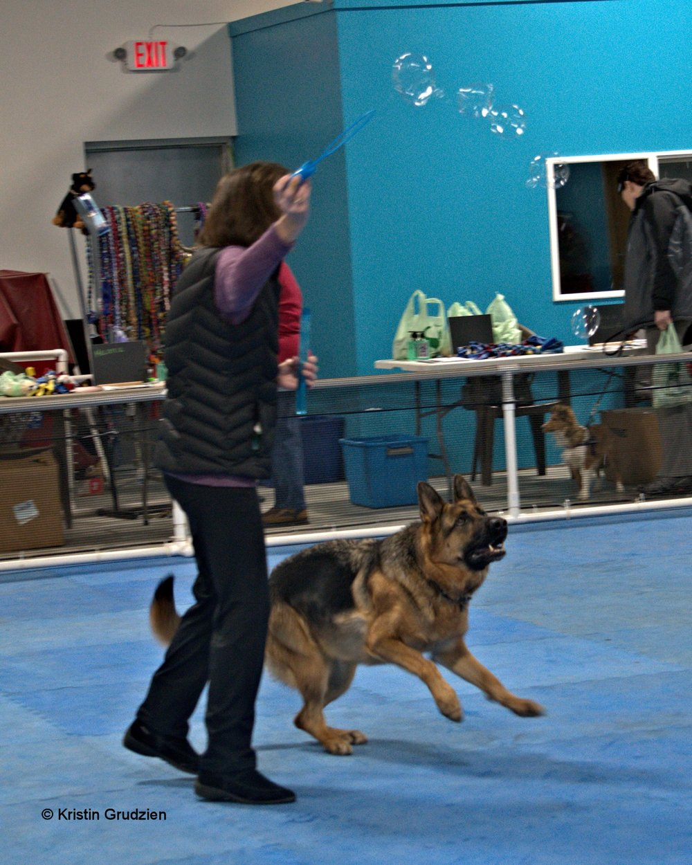 german shepard jumpoing after bubbles.jpg