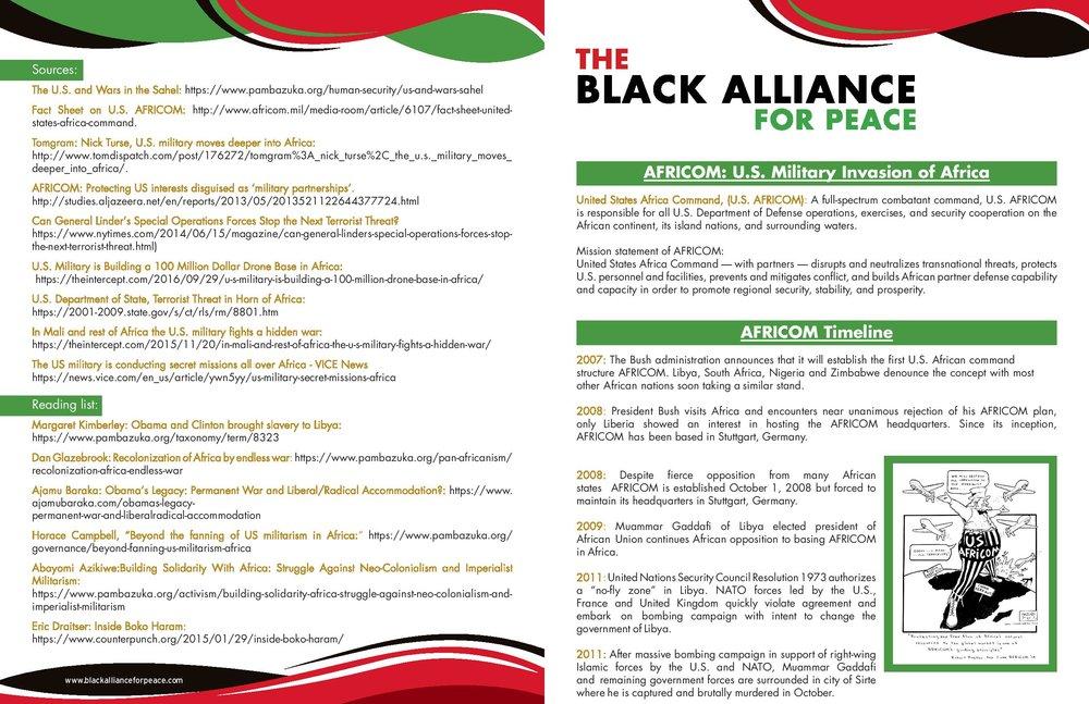 AFRICOM Flyer