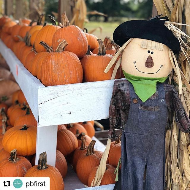 #Repost @pbfirst (@get_repost) ・・・ Fall Festival is happening TONIGHT at 4PM! Hayride, pumpkin patch, carnival-styled games, concessions, trunk-or-treat, and CANDY!! It's going to be fun for the whole family.  We are #acrossfromthemovies which is the AMC ShowPlace 8 Theater and next to Westwood Nursing Home.  Our address is: 3482 South Westwood Boulevard, Poplar Bluff, MO 63901