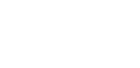 BLUEBONNET BARBECUE