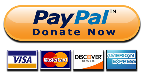 paypal-donate-button-png-paypal-donate-button-high-quality-png-500.png