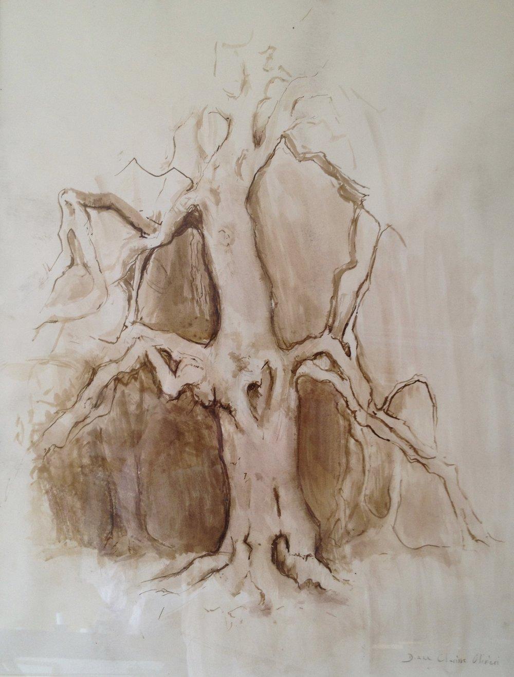 L'arbre en marche (hêtre pleureur)
