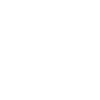 Lone Star Walking & Running Co. Logo