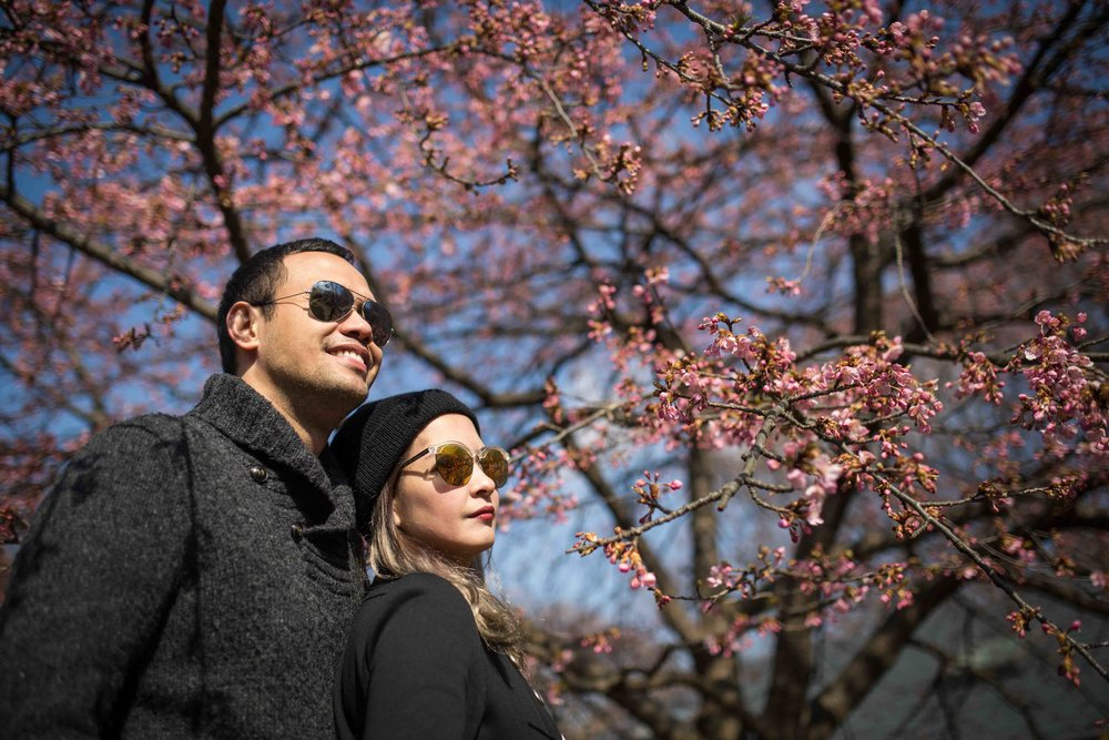 Pre-wedding photo shoot (cherry blossoms, Tokyo)