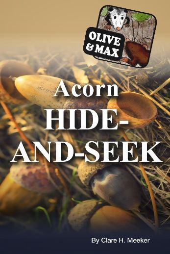 olive-max-acorn-hide-seek.JPG