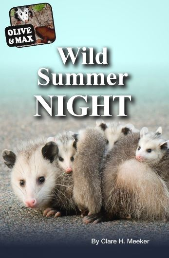 olive-max-wild-summer-night.JPG