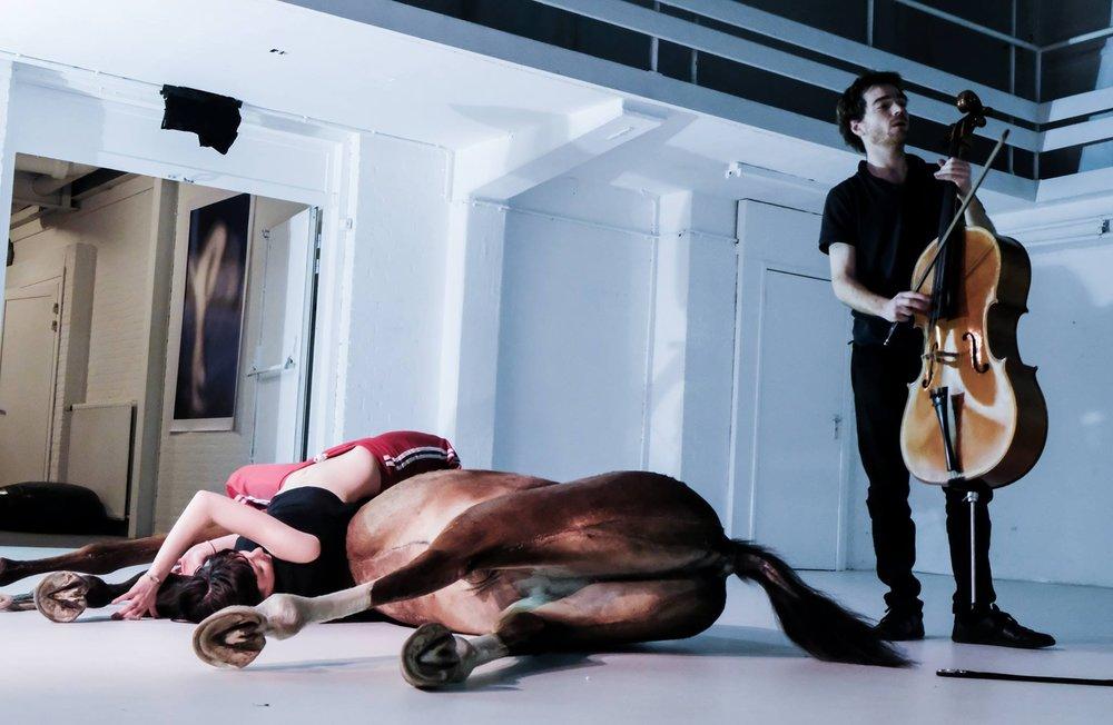 horse met yannick en romy.jpg