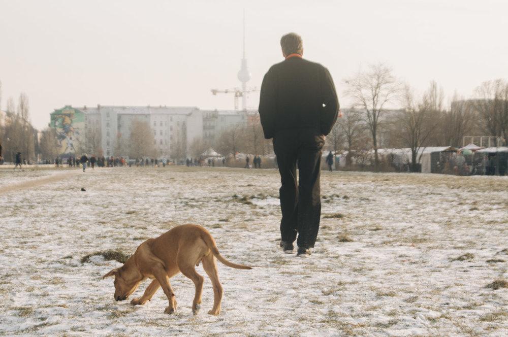 berlin-jan-25.jpg