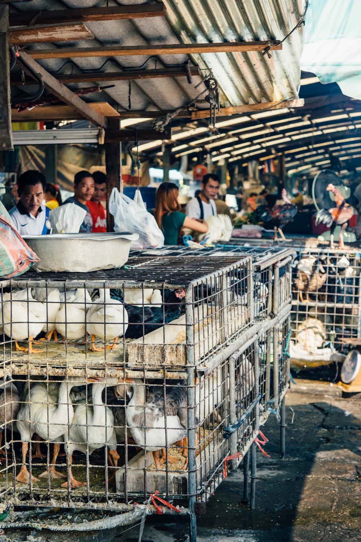 klong-toey-fresh-market-bangkok.jpg