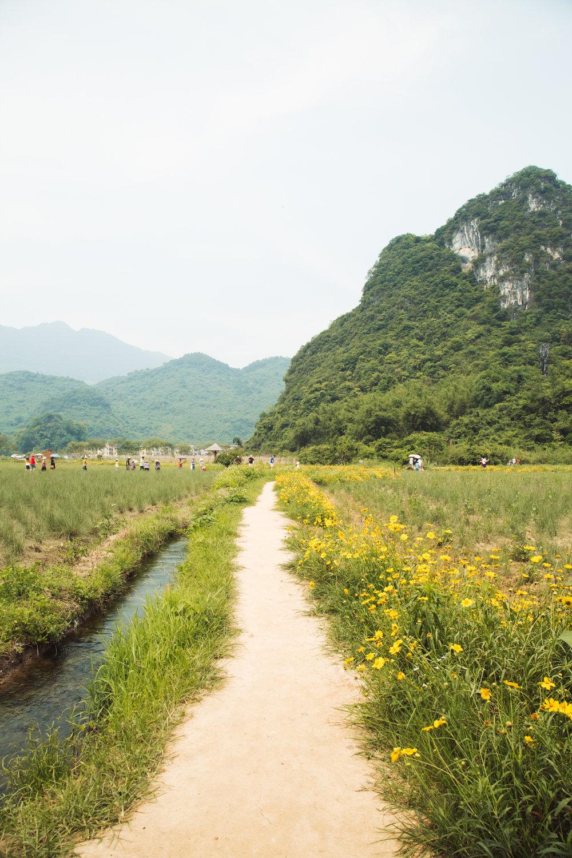 qingyuan-58.jpg