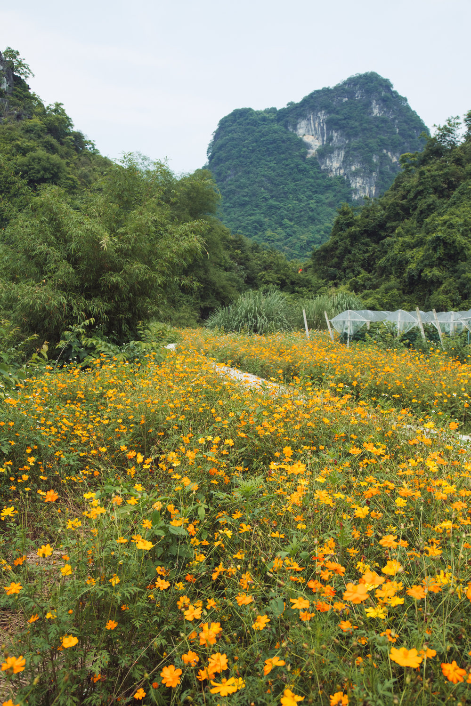 qingyuan-50.jpg