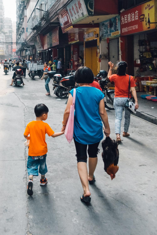qingyuan - the city