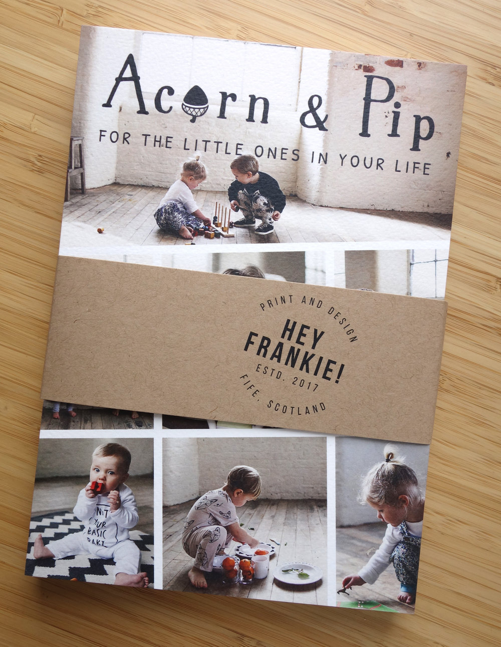 ACORN & PIP | PROMOTIONAL FLYER