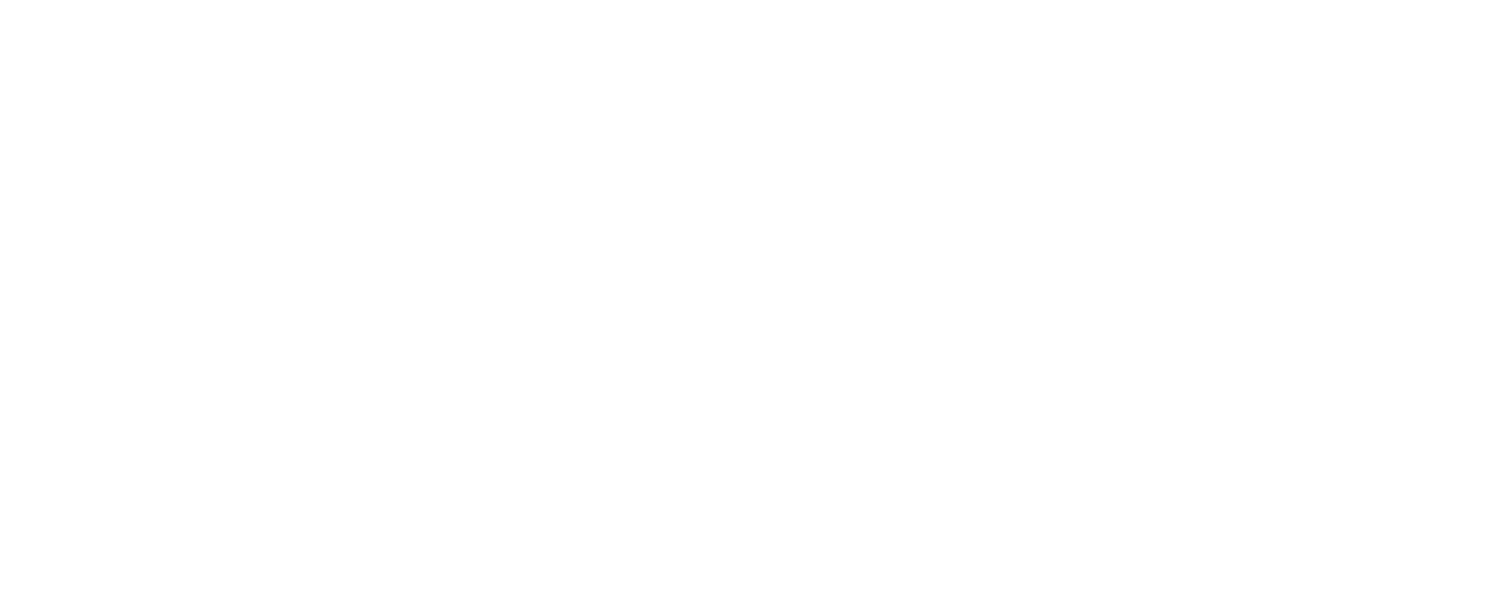Business Influence Group