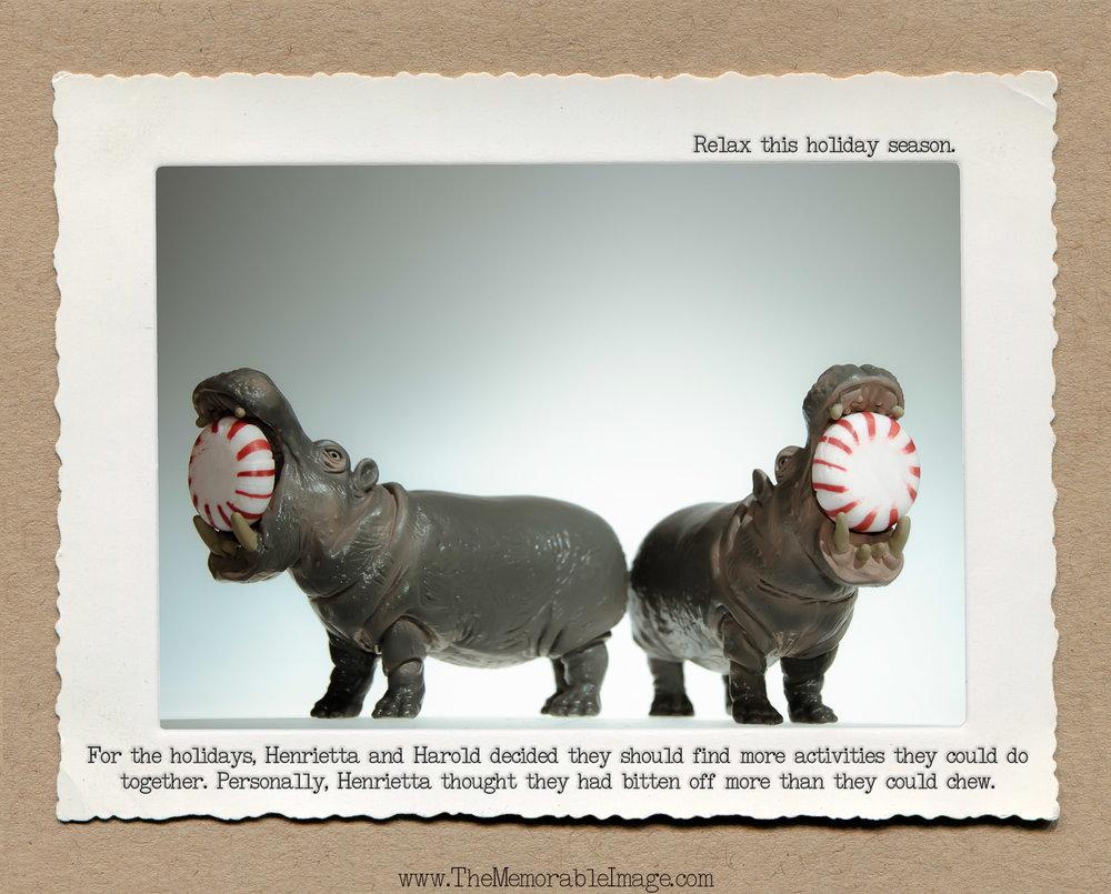 8x10_Dec_Hippo Pepermint.jpg