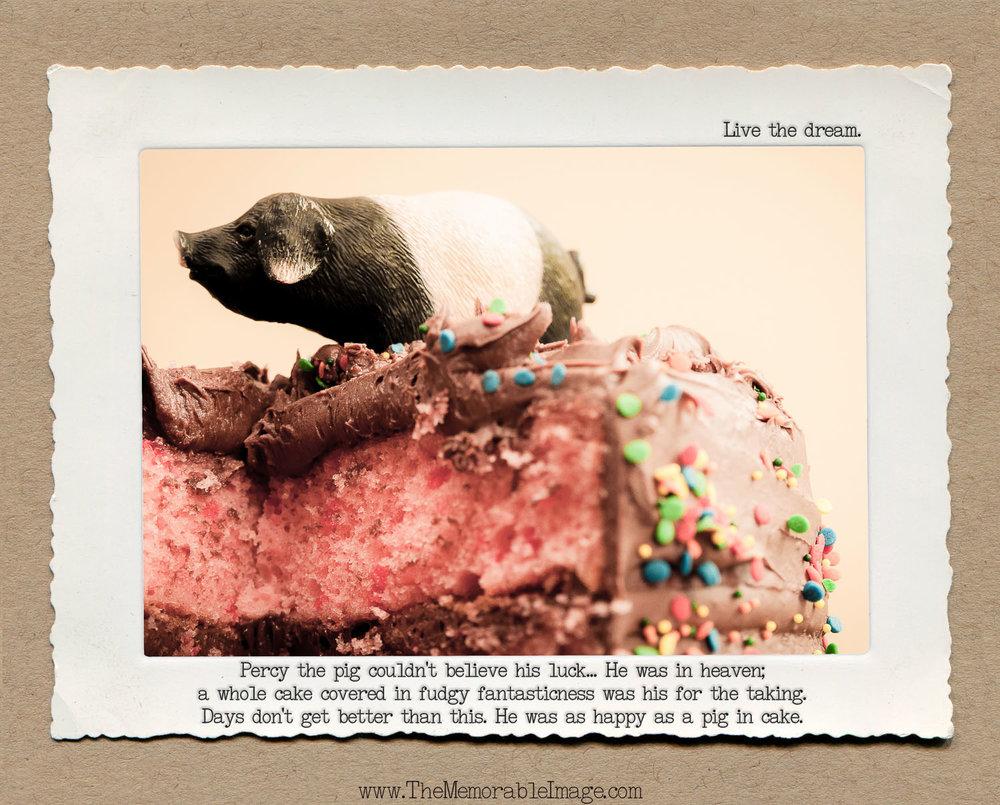 8x10_May_Pig Cake.jpg