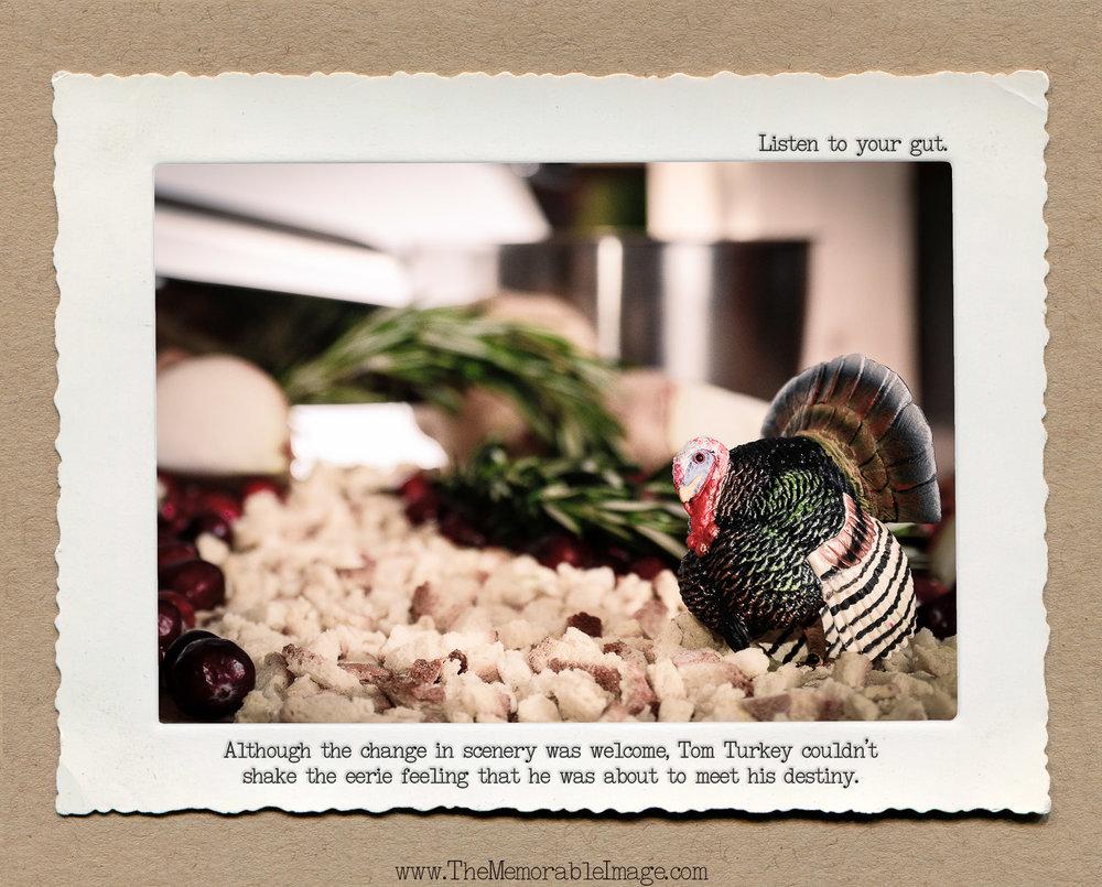 8x10_Nov_Tom Turkey.jpg