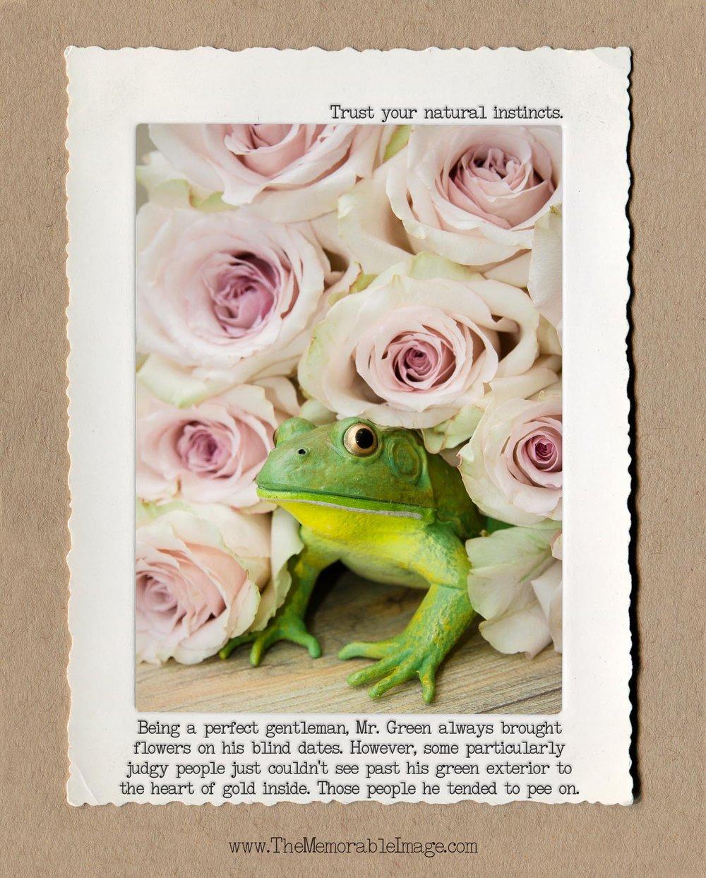 8x10_Vert_July_Frog Roses.jpg