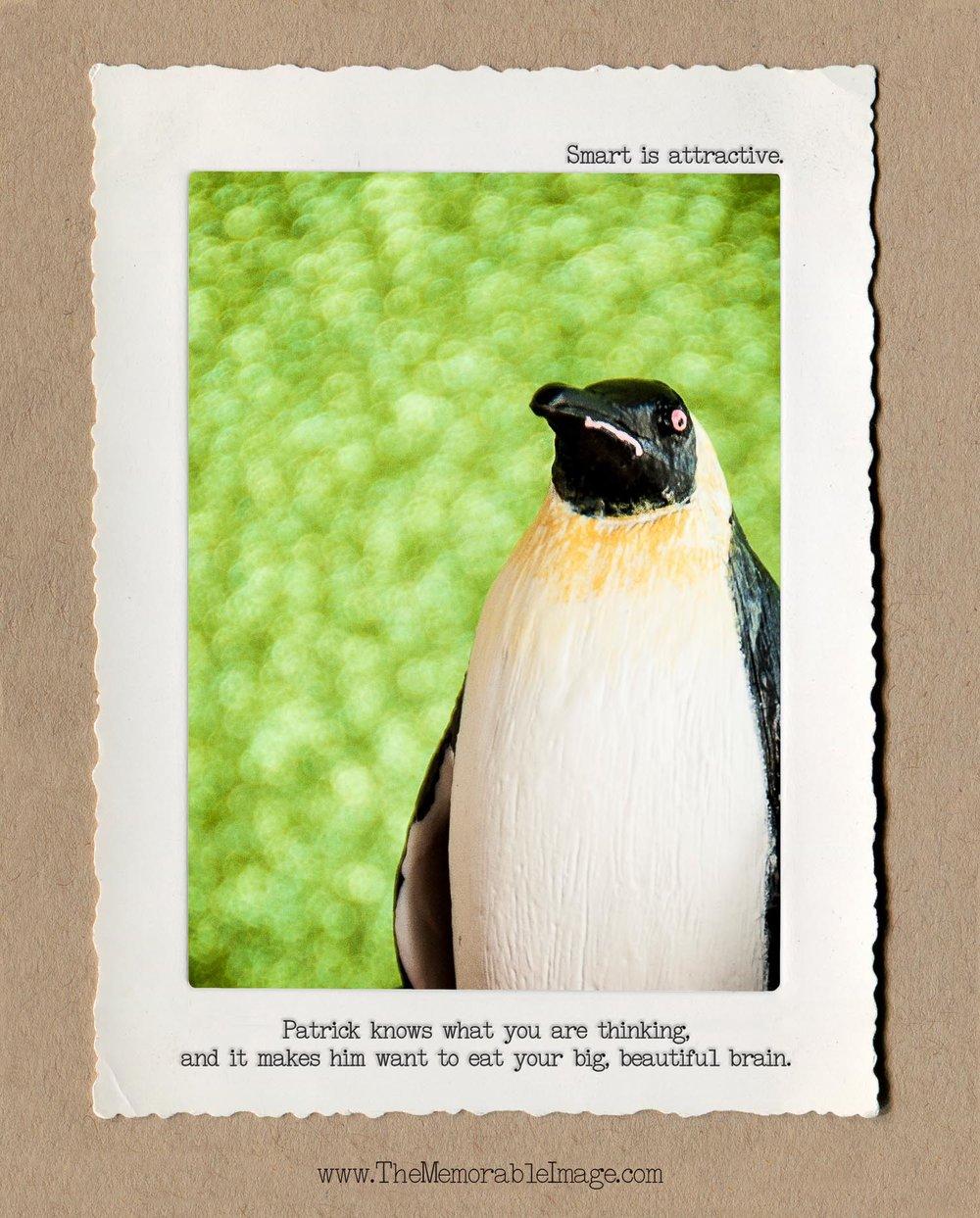 8x10_Vert_Oct_Zombie Penguin.jpg