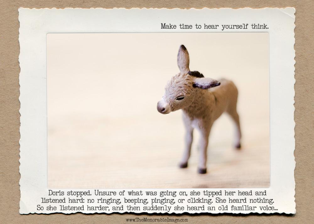 Donkey_Silence_C_W.jpg