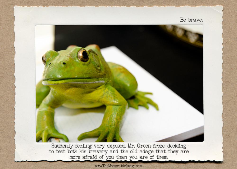 Frog_Brave_C_W.jpg