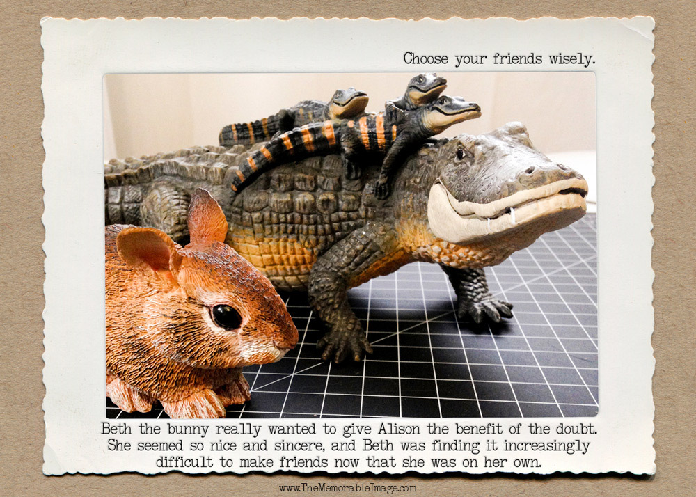 Bunny_Alligator_C_W.jpg