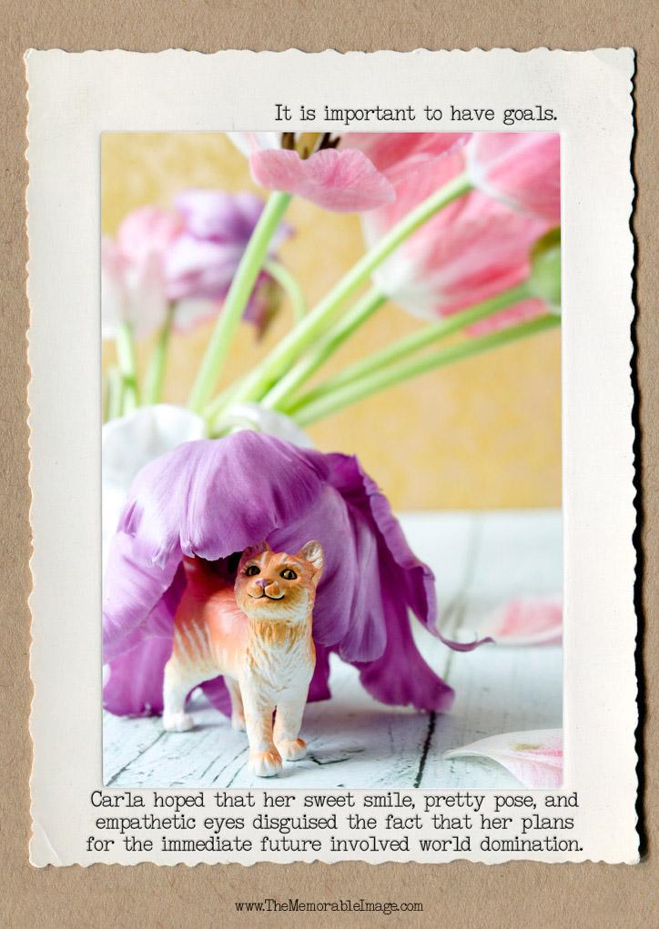 Cat_Tulips_C_W.jpg