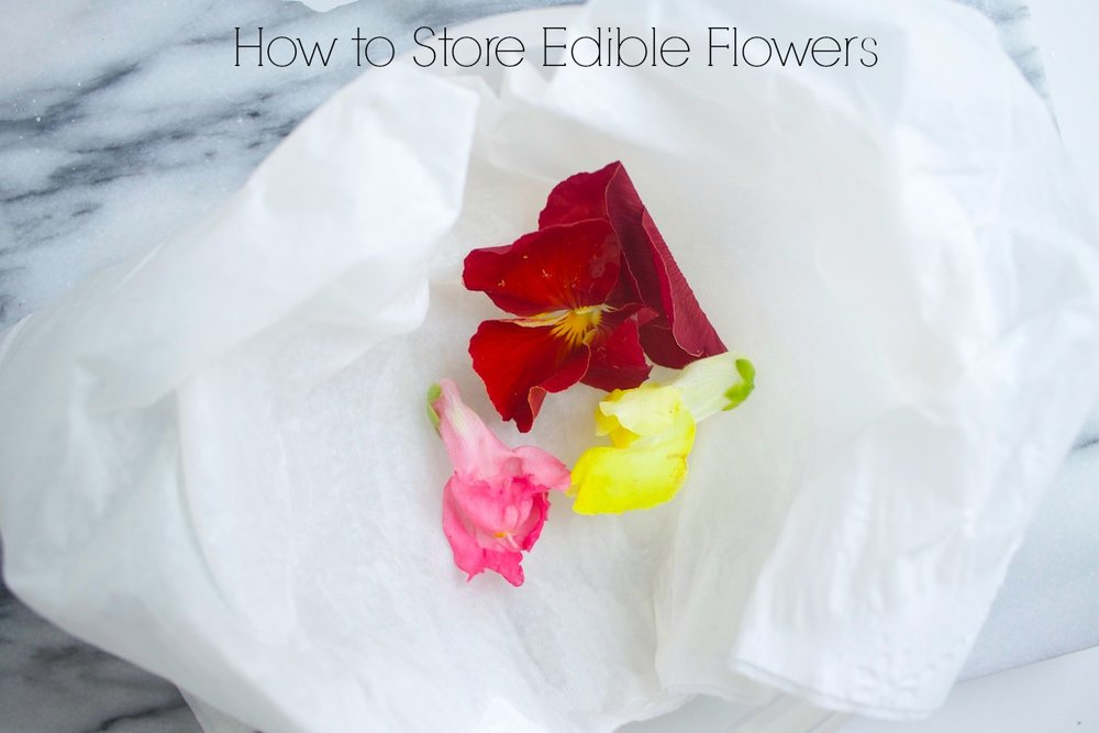how-to-store-edible-flowers.jpg