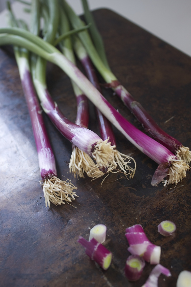 purple-scallions.jpg