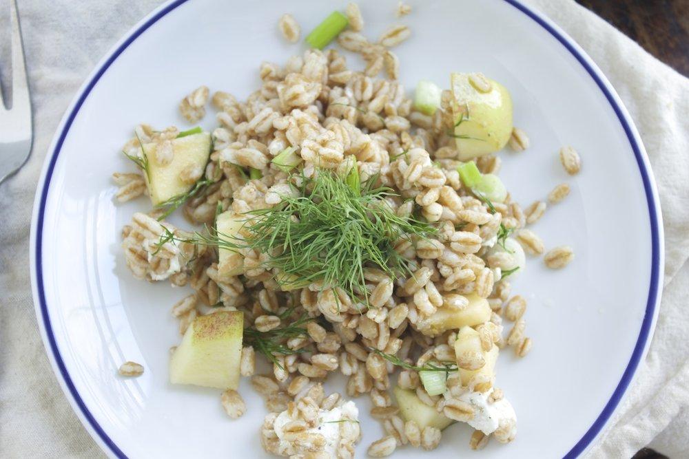 recipes-for-picnic-salads.jpg