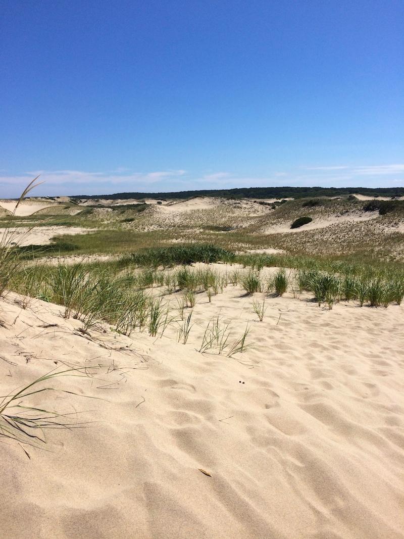 cape-cod-dunes.jpg