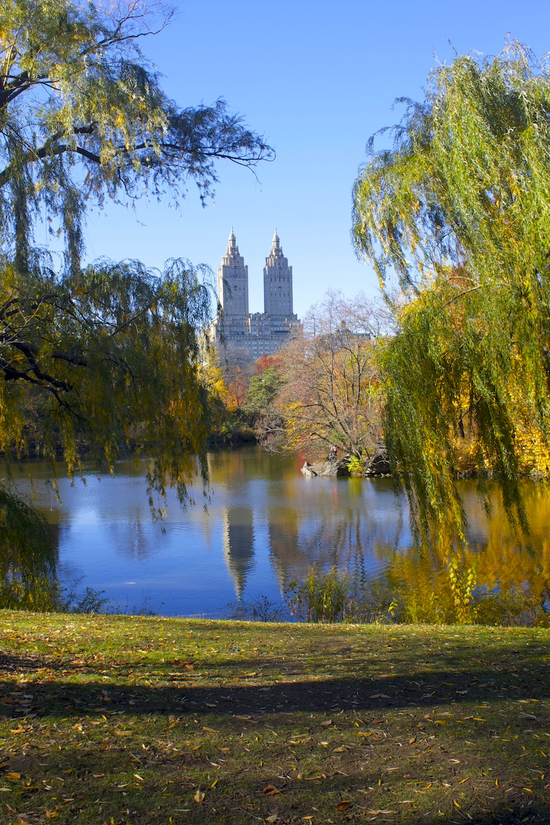 Fall-Central-Park-NY.jpg