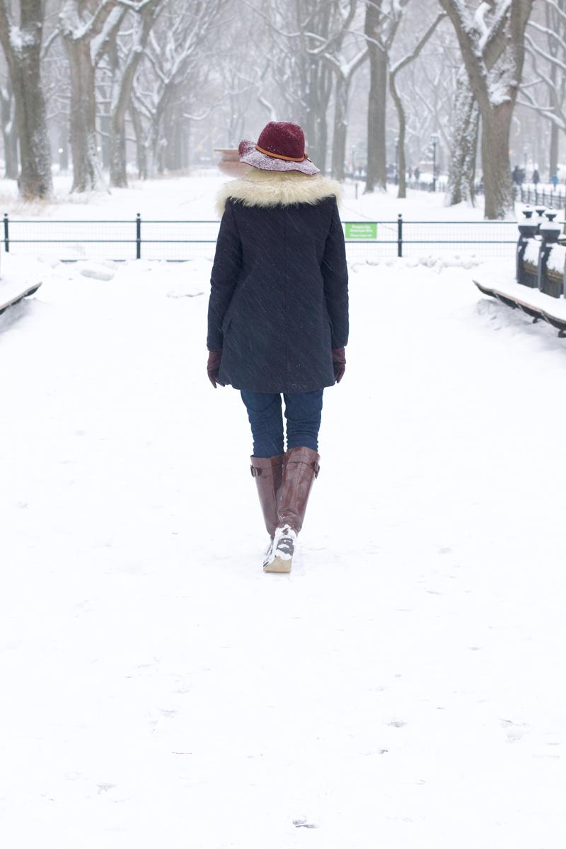 Snowy-Central-Park.jpg