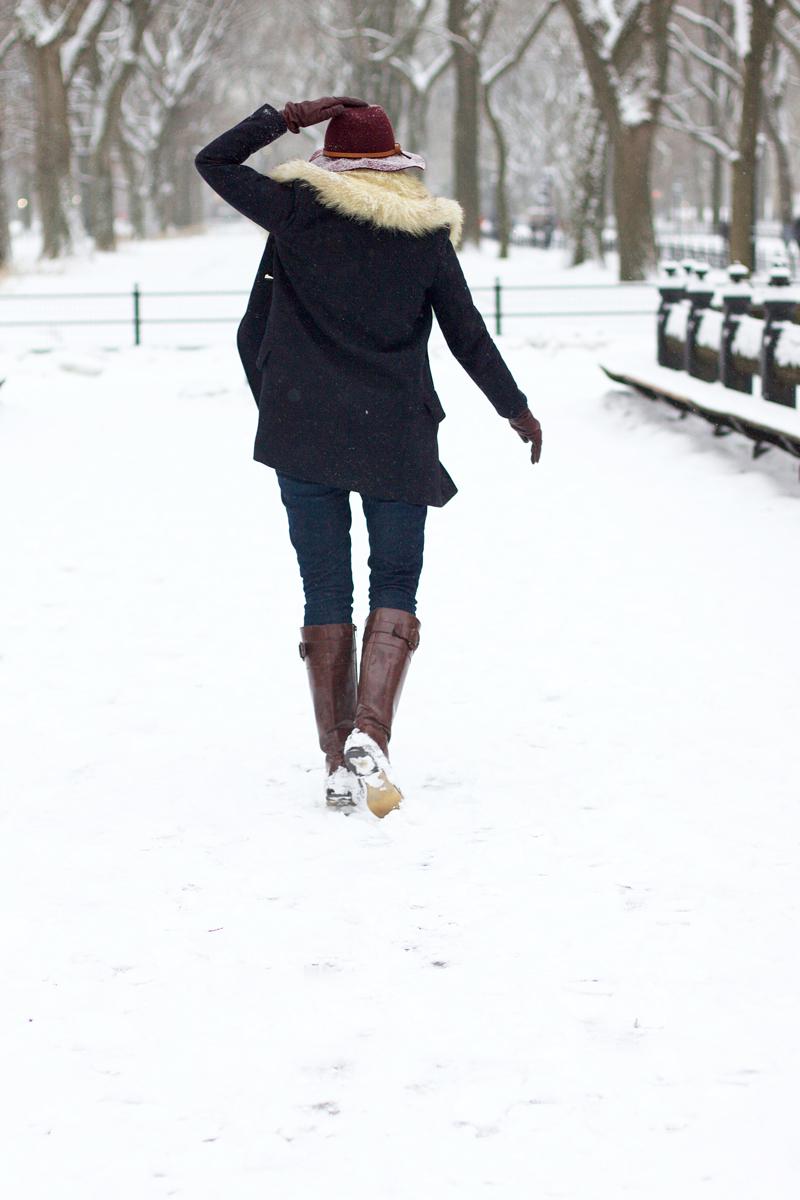 snow-in-central-park.jpg