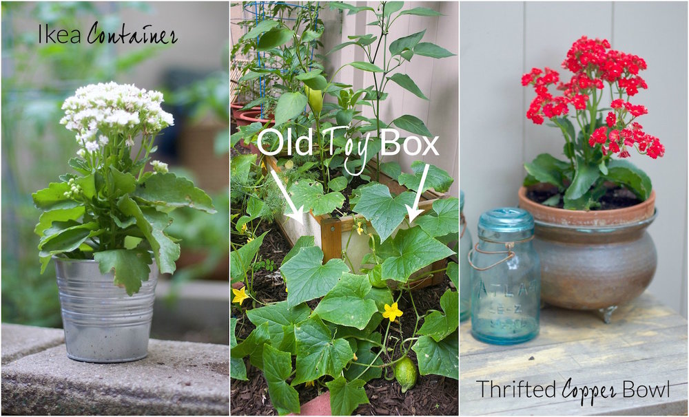 Planting-containers.jpg