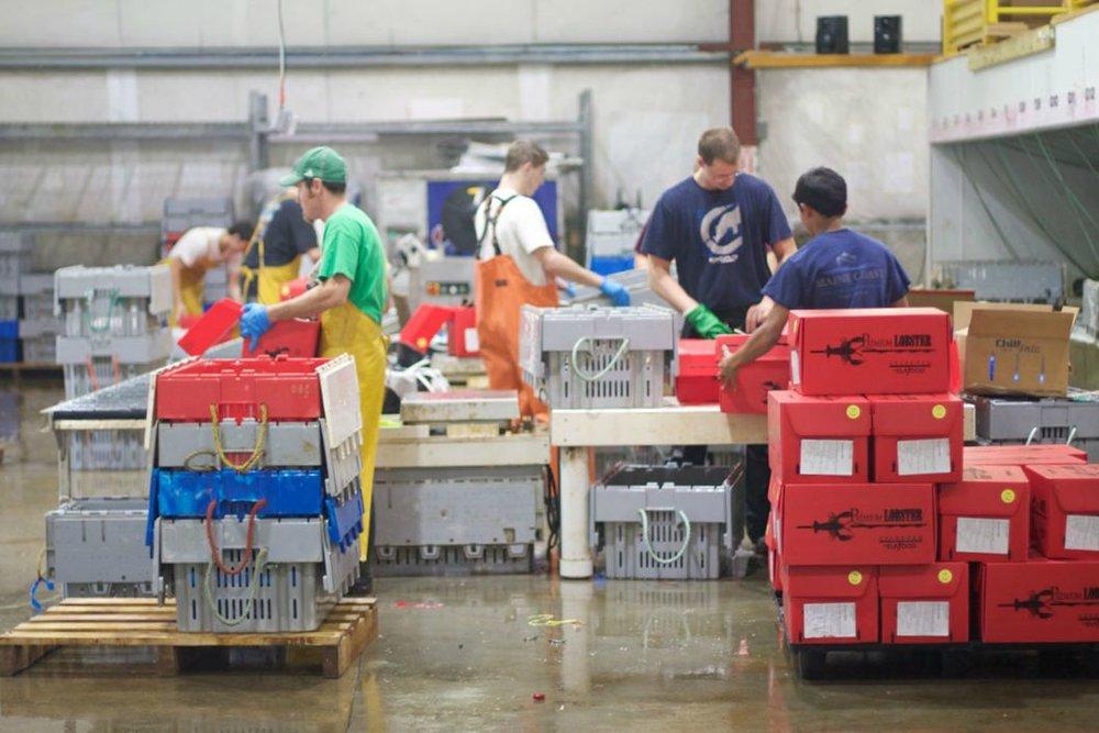 lobster-warehouse.jpg