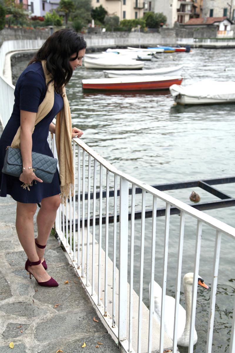 1-Lake-Como-swans.jpg