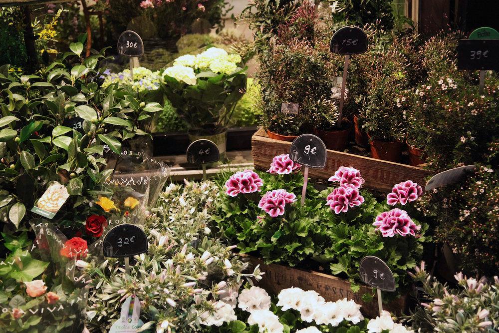 flower-stand-in-Paris.jpg