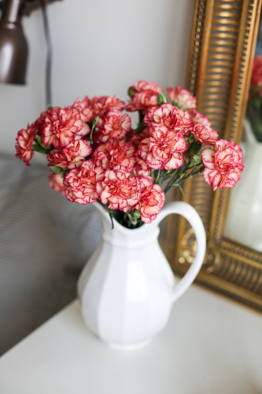 pink-flowers.jpg