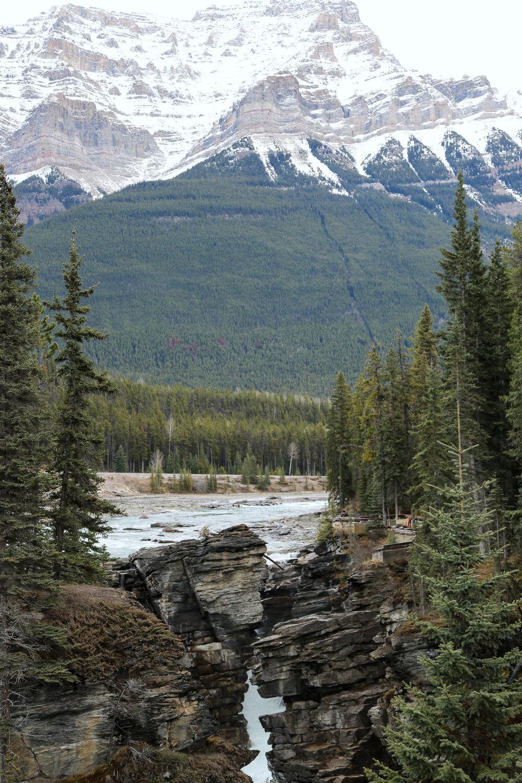 icefield-parkway-drive-alberta-8.jpg