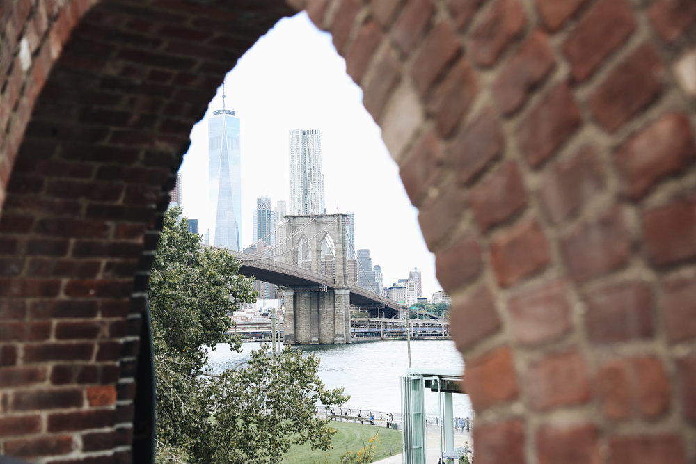 view of new york city.jpg